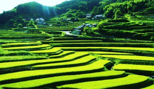 """5 Beautiful terraced paddy field """"Tanada """""""